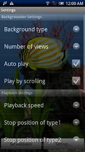 Chaetodon ornatissimus- screenshot thumbnail
