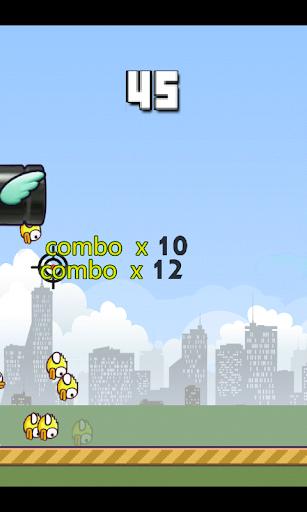 Fly Hunt-KO Birds