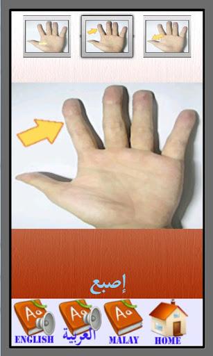 玩免費教育APP|下載碧涛词典(英语 - 阿拉伯语) app不用錢|硬是要APP