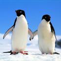 Penguin Wallpapers logo