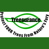 Treesurance