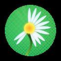Daisy Petals Premium icon