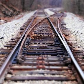 RR Switches by Stephanie Turner - Transportation Railway Tracks (  )