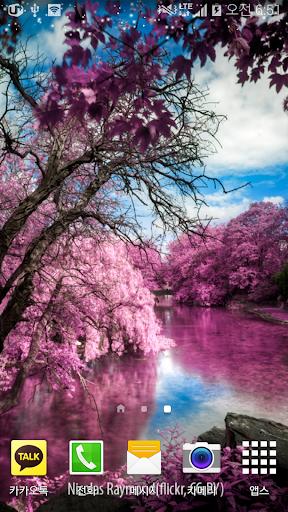 핑크판타지배경