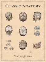 Screenshot of Classic Anatomy