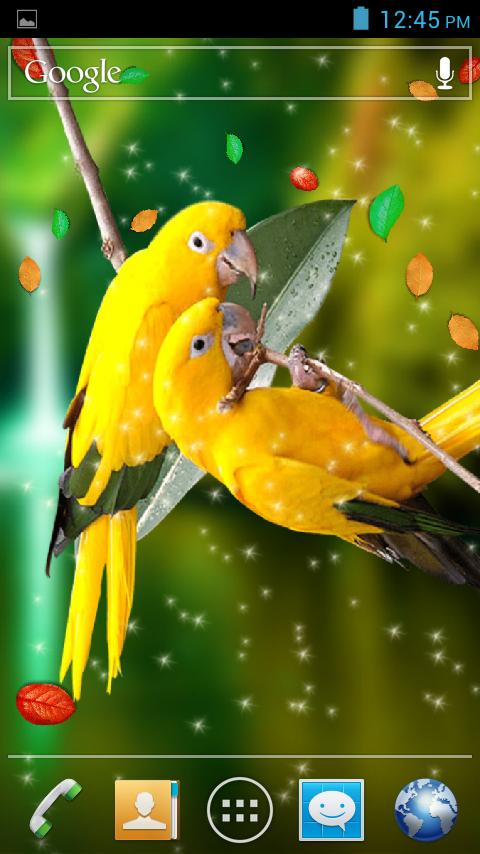Birds 3d Live Wallpaper Google Play Store Revenue