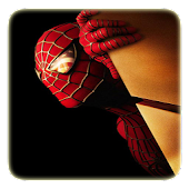 Spidermen Puzzle