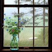 Rain Outside Window LWP