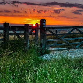 Gate & sunset by Bela Paszti - Landscapes Sunsets & Sunrises ( west sussex, hill, england, chichester, relax, sunset, goodwood, gate,  )