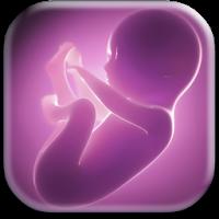 Alima's Baby: Baby Virtual Pet 1.101