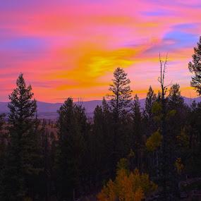 Sunrise In The Rocky Mountains by Eddie Tuggle - Landscapes Sunsets & Sunrises ( mountains, kenosha pass, colorado, sunrise, morning )
