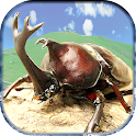 Assault !Battle of beetle-stag icon