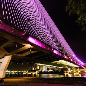 Bridge Of Putrajaya Malaysia by Stephen Ckk - Buildings & Architecture Bridges & Suspended Structures