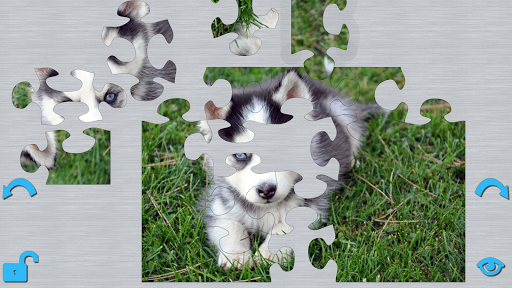 Puppies Puzzle HD
