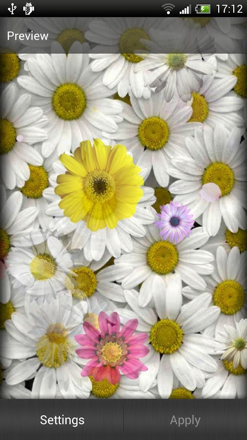 Daisies Live Wallpaper - screenshot