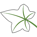 Ivytalk® icon