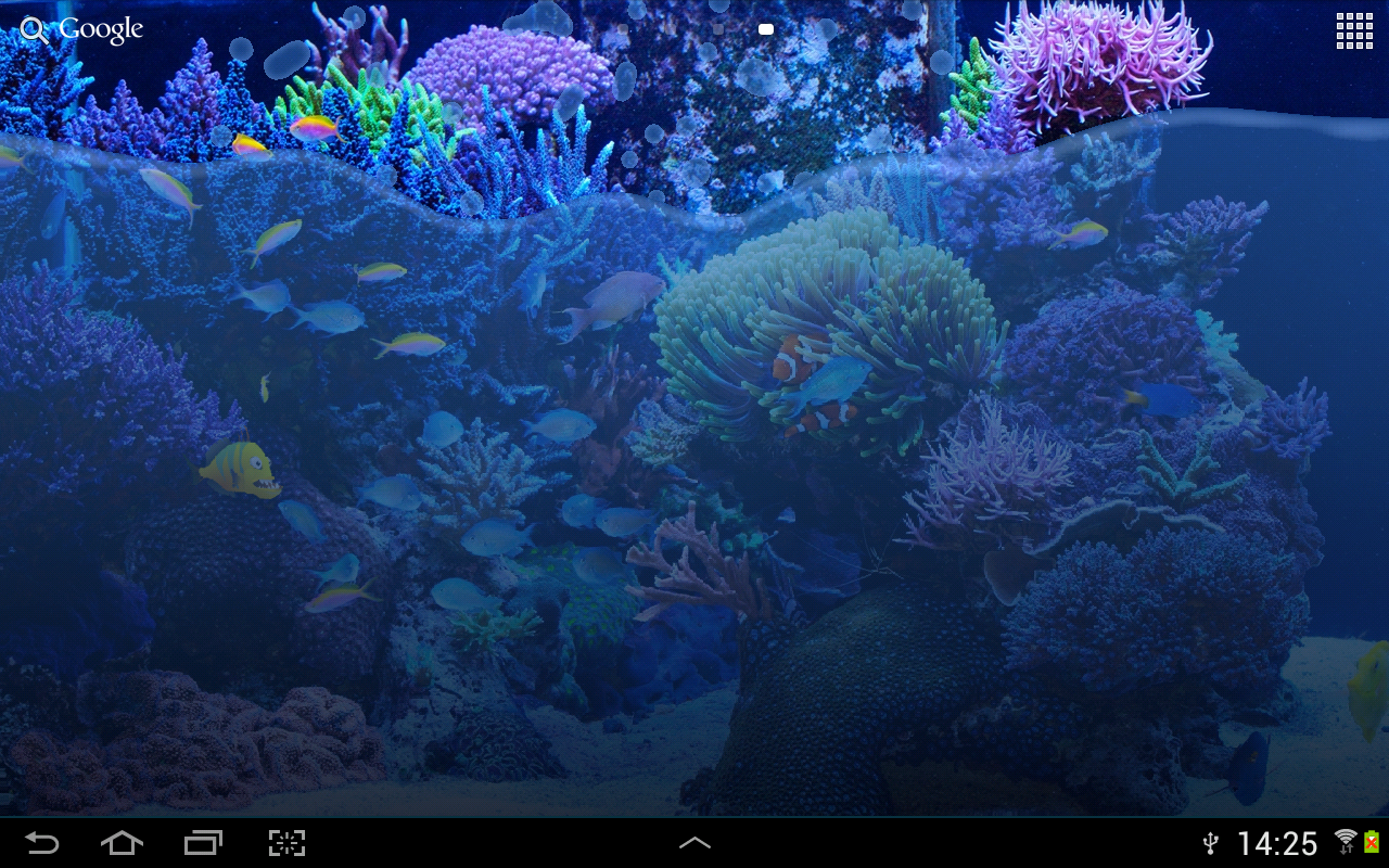 Fish tank live wallpaper android apps on google play for Live fish online