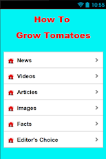 How To Grow Tomatoes Android Productivity