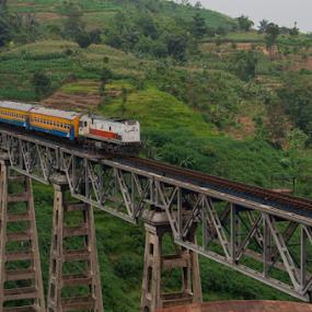 Citiis Bridge by Husni Mubarok - Transportation Trains