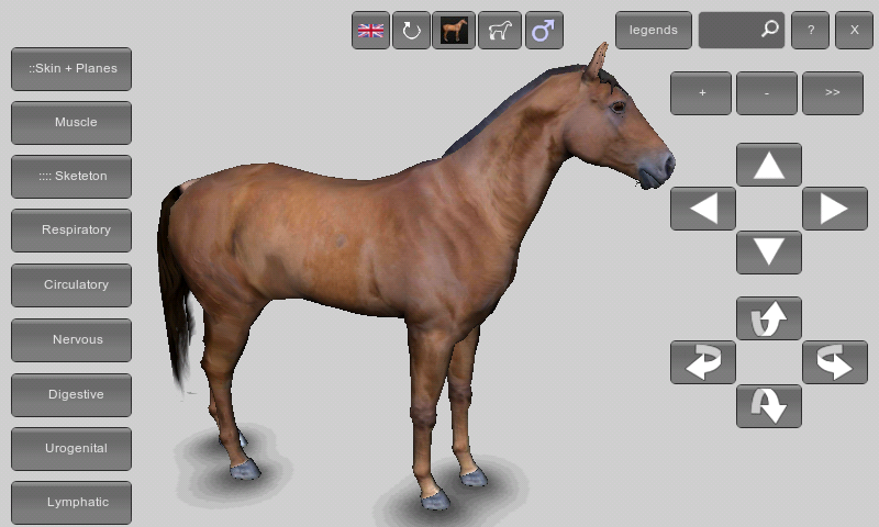 Download 3d Horse Anatomy Software Apk Latest Version App For