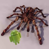 Tarantula 3D live wallpaper