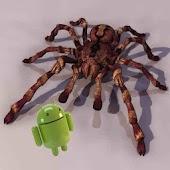 Tarantula 3D live wallpaper