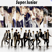 Super Junior Fans
