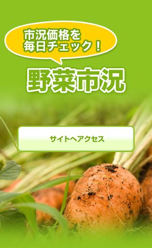 野菜市況-全国9ケ所市況価格検索
