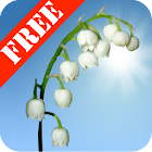 Lily of the Valley Free icon