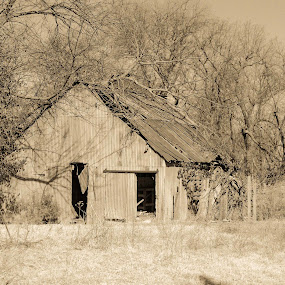 by Beckie Caughman - Black & White Objects & Still Life ( barn, rural, country, decay, abandoned,  )