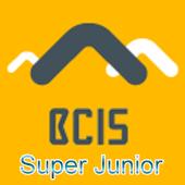 V-Power Scheme S - BCIS