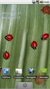 Real Ladybug Live Wallpaper - screenshot thumbnail
