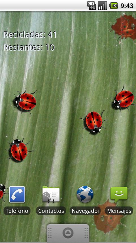 Real Ladybug Live Wallpaper - screenshot