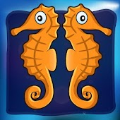 Sea Horse Chronicles