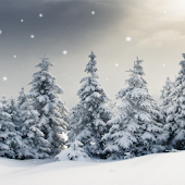 Live Snow Wallpaper