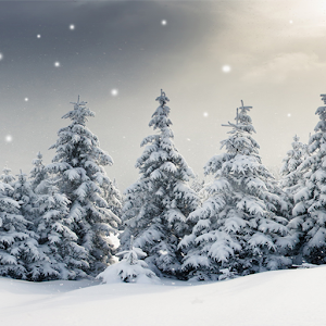 live snow wallpaper android apps on google play