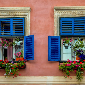 Blue windows by Adrian Ioan Ciulea - Buildings & Architecture Other Exteriors ( blue, windows, flowers, , Flowers, Flower Arrangements )