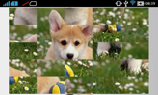 Little Puppy - Puzzle