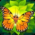 Free Flutter APK for Windows 8