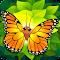 Flutter 1.97 Apk