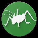 Bugs of New Zealand