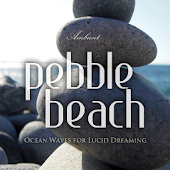 Pebble Beach Ocean Waves