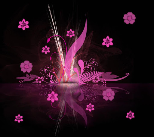 Pink Daisies-LWP