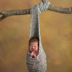 Hangin' by Kelly Goode - Babies & Children Babies (  )