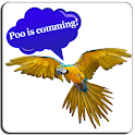 Bird translator (prank) icon