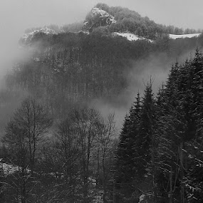 Descending by Iulia Breuer - Black & White Landscapes ( mountains, winter, fog, woman, horse,  )