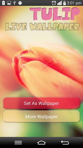 Tulip Live Wallpaper