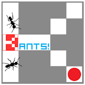 KANTS - KUBIKULO Ants!