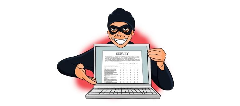 report survey fraud