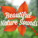 Beautiful Nature Sounds icon